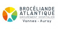 Logo---Vannes-Auray---Blanc-RVB